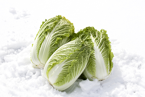 storage-method-of-winter-vegetables